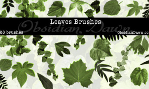 Unique Green Leaves Photoshop Brushes