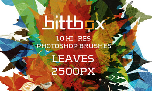 Amazingly Colorful Leaf Brush Set