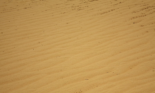 Fairly Excellent Sand Texture