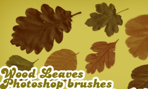 Creative Leaf Brush Set