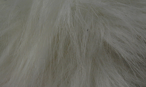 Scattered Yet Cool Fur Texture