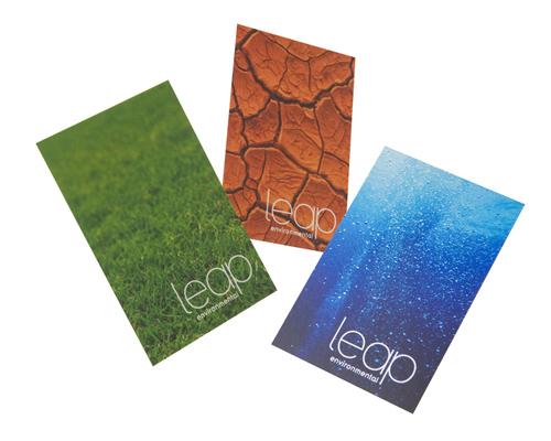 Leap Leap Environmental