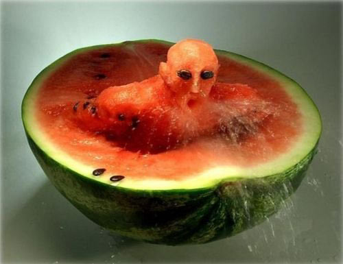 Watermelon Amazement Food Art