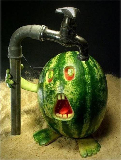 Watermelon Craze Food Art