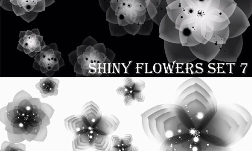 Glowing Floral Photoshop Brushes