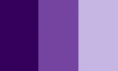 Reasons Why Some Web Designers Use Monochromatic Color Scheme
