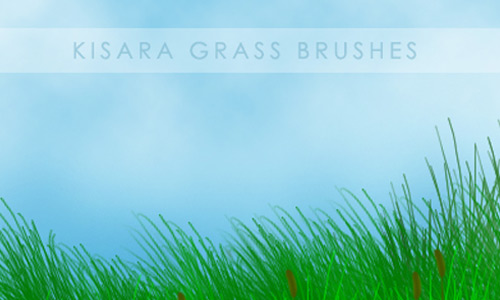 Very Useful Grass PSD Brushes
