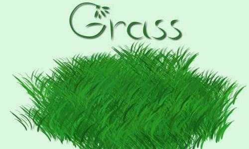 Amazing Set of Grass Photoshop Brushes