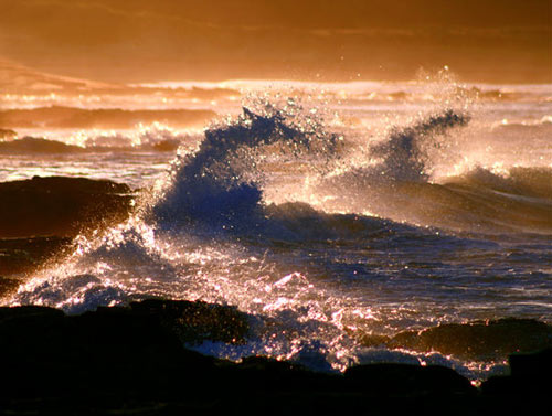 Awesome golden waves photo