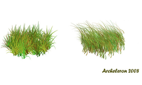 Something to Try Out Grass Photoshop Brushes