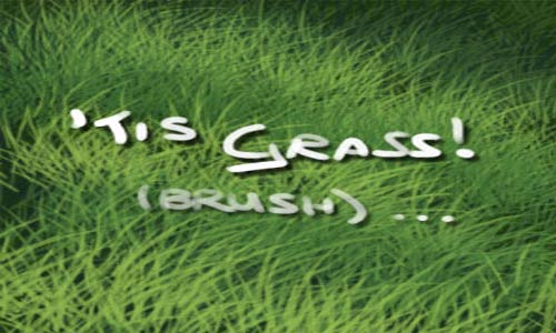 Good Choice Set of Grass Photoshop Brushes