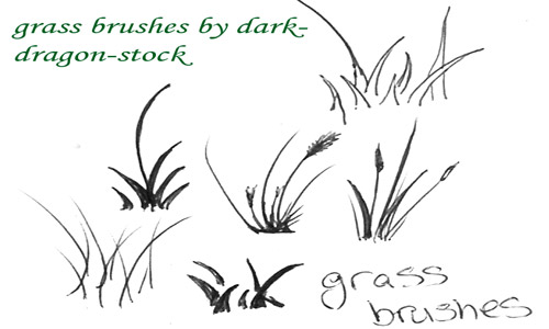 Really Great Set of Grass Photoshop Brushes