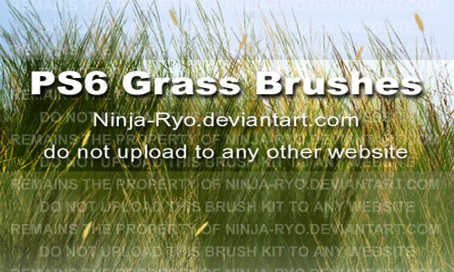 Soothing Set of Grass Photoshop Brushes