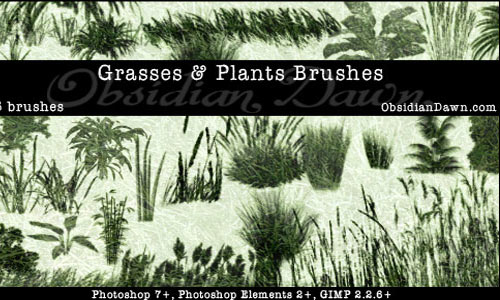 Inviting Set of Grass Photoshop Brushes