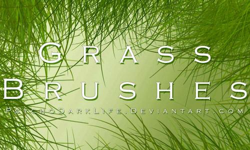 ABR grasses