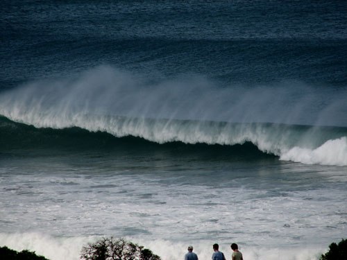 Fine looking waves photo.