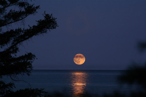 Cool Moon Photography