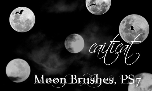 Fantastic Moon Brushes