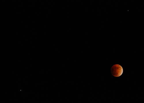 cool moon photo
