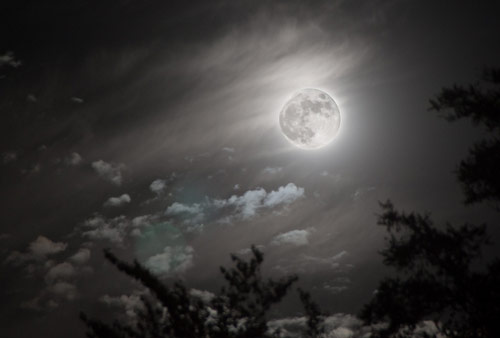Heartwarming moon Photography