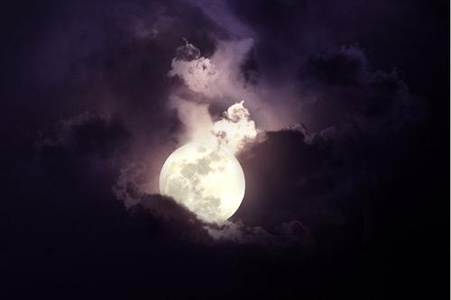 amazing moon cookie photo