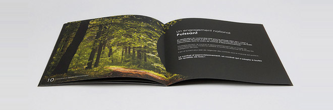 40 Examples of Incredibly Pleasing Brochure Designs