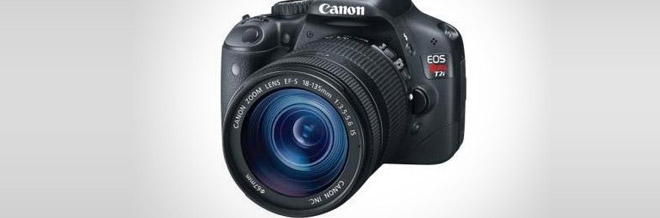 A Glimpse at the Best DSLRs for Beginners