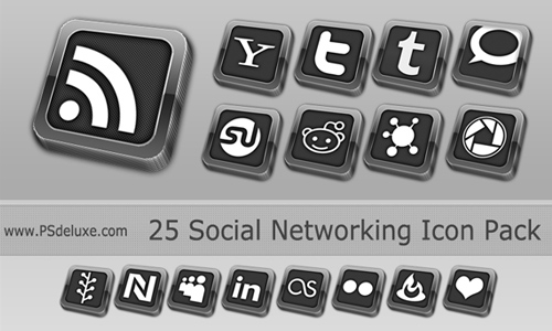 Elegant Social Network Icon.P