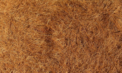 Attractive Hay Texture