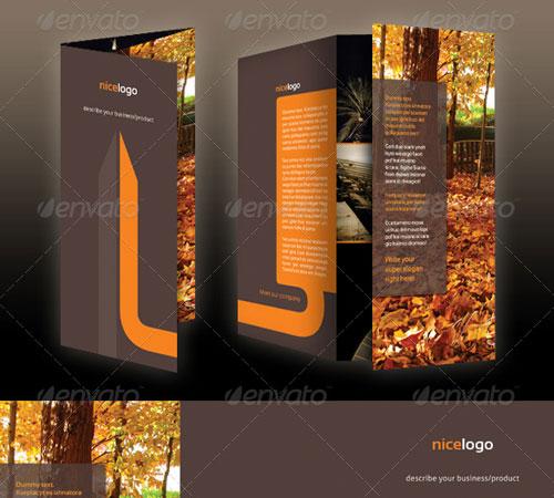 A4 Tri-Fold Brochure