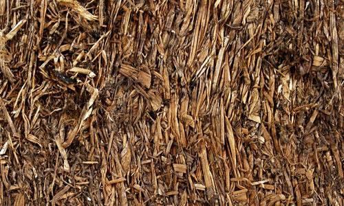 So Wet Straw Texture