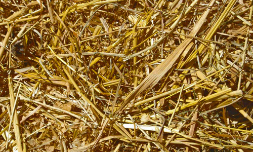 Assuring Hay Texture
