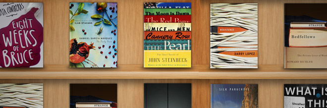 Create an iBook Inspired Bookshelf Mock-up