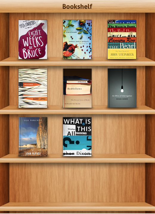 iBook Inspired Bookshelf