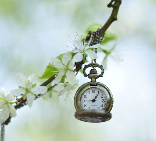 Captivating scene clock photo