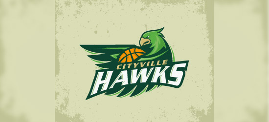 hawks basketball logo design