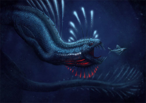 deep sea dragon