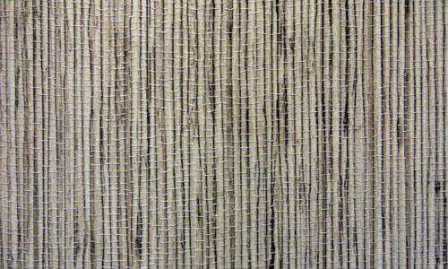 Bamboo Texture 2
