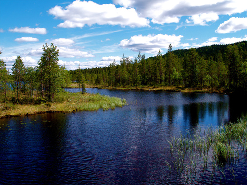 Lake in Kuusamo
