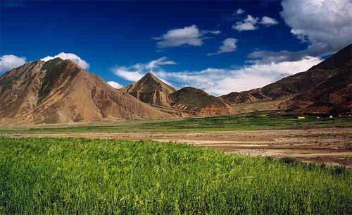 Tibetian landscape