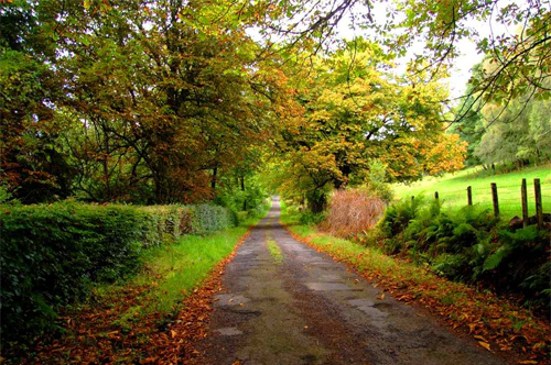 Boturich Road