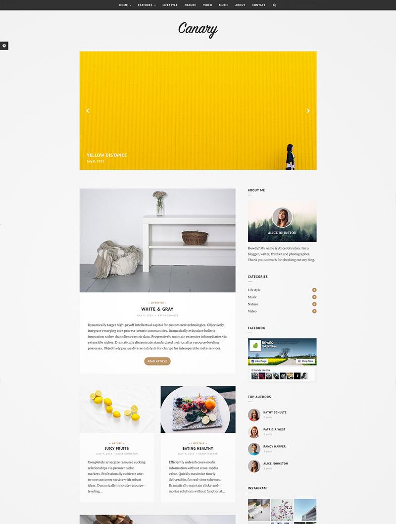 minimal wordpress blog
