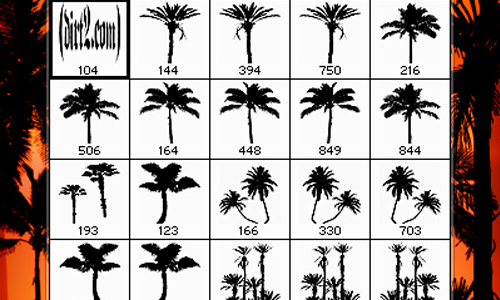 PS7 - PALM TREE BRUSHES SET.2