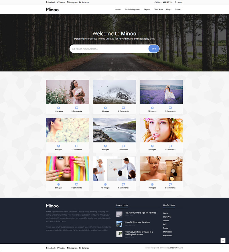 business portfolio theme