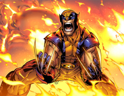 Wolverine 42 cvr