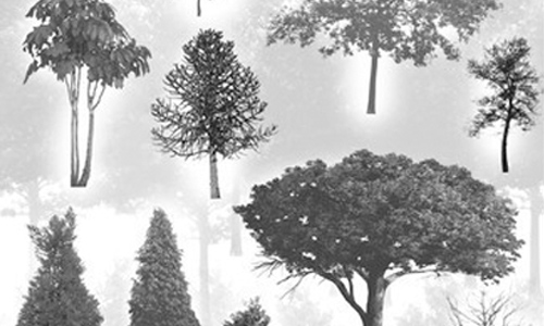 30 HighRes Tree Brushes