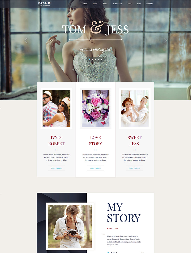 responsive theme website