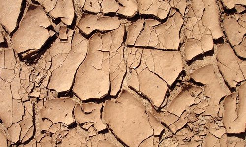 Attractive Cracked Clay Texture