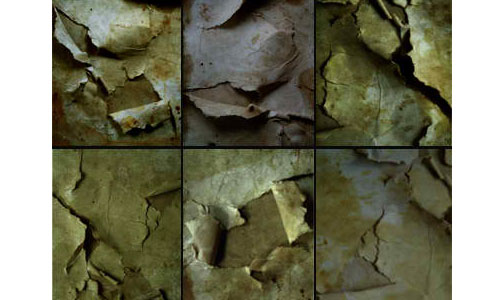 Grunge Torn Paper Texture