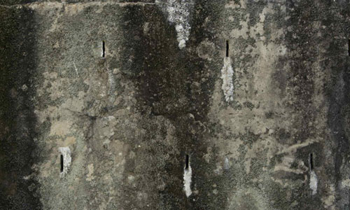 Intriguing Dirty Wall Texture